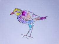 Hydrangea bird
