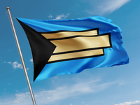 Tulsa Flag entry