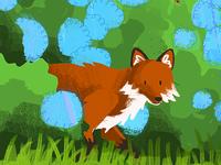 Fox in the Hydrangeas