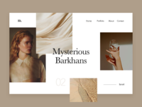 Barkhans. Portfolio Concept