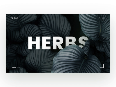 Plants Store flowers studio blog interior e commerce simple herbs white plants store the glyph branding website minimalism product typography logo web design ux ui
