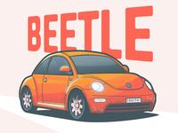 The Beautiful Bug