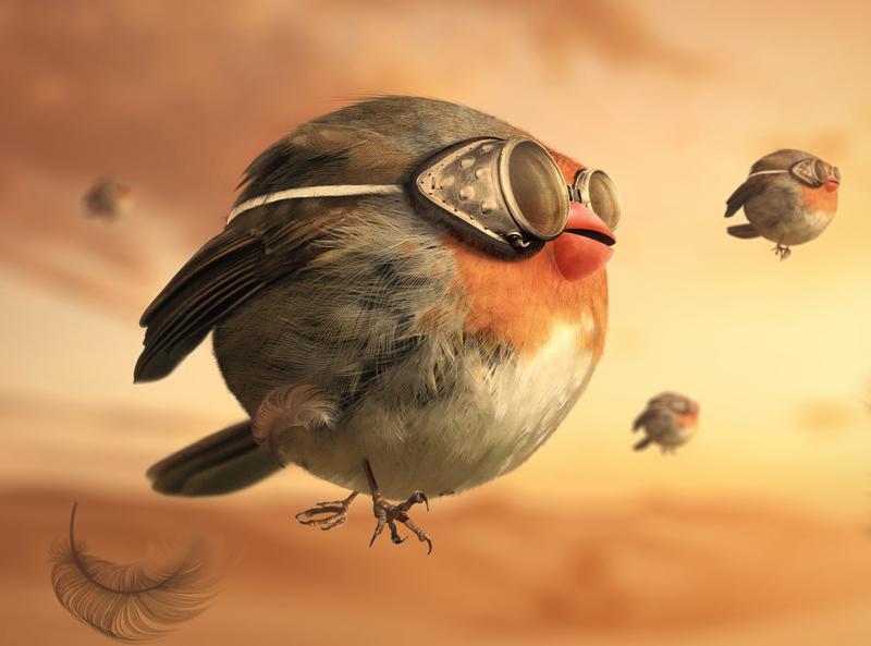 fat bird fat ball orange pilot cartoon cartoon character fly photoshop manipulation bird illustration retouch