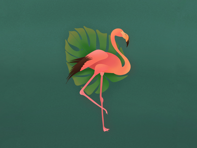 Flamingo and Monstera