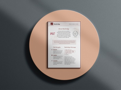 Brochure Design for Consulting Company
