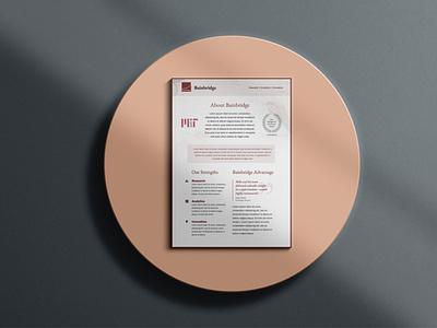 Brochure Design for Consulting Company design illustration mockup brochure mockup brochure template branding graphic brochure design brochure