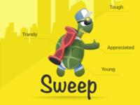 Sweep turtle