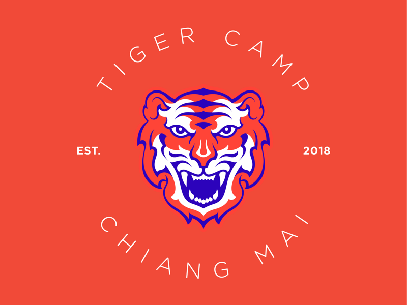 Tiger Camp illustration branding logo camp tiger