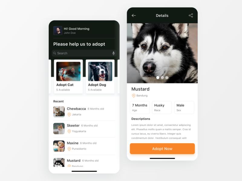 Pet Adopt App dog cat adopt animal pet iphone x iphone ios11 mobile ios app clean ui