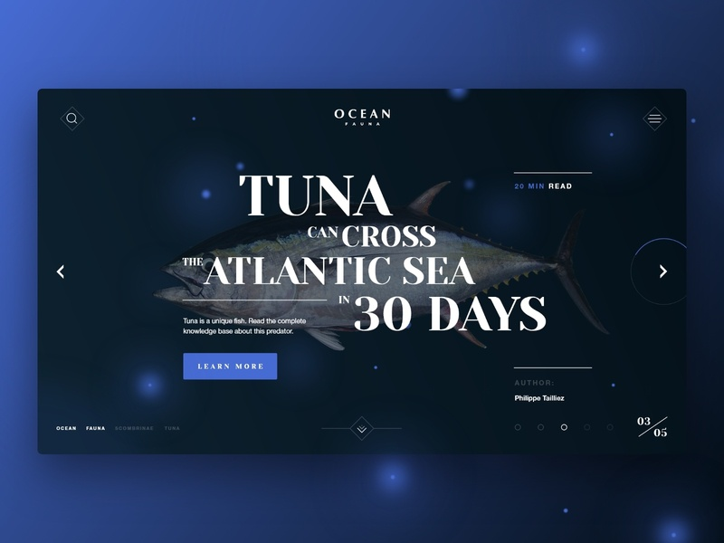 Ocean Fauna | Mainsrceen text blog digital flow screen arrow fish blue black typography design ux clean web minimal ui