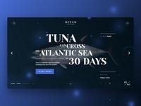 Ocean Fauna | Mainsrceen