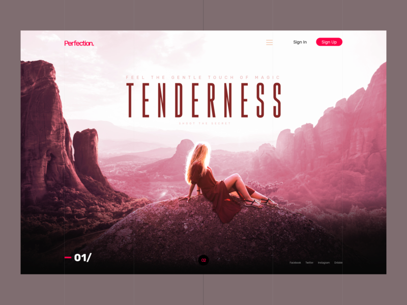 Concept — TENDERNESS inspiration ui design travel concept perfection typography beautiful ux ui webdesign web
