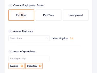 Job Application Form website web interface job input ux ui form