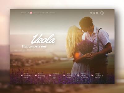 Veola wedding blog home page web design design ui home page blog wedding