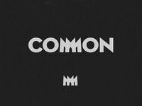 Common logo and icon