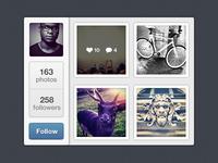 Mini Instagram widget instagram follow profile rebound
