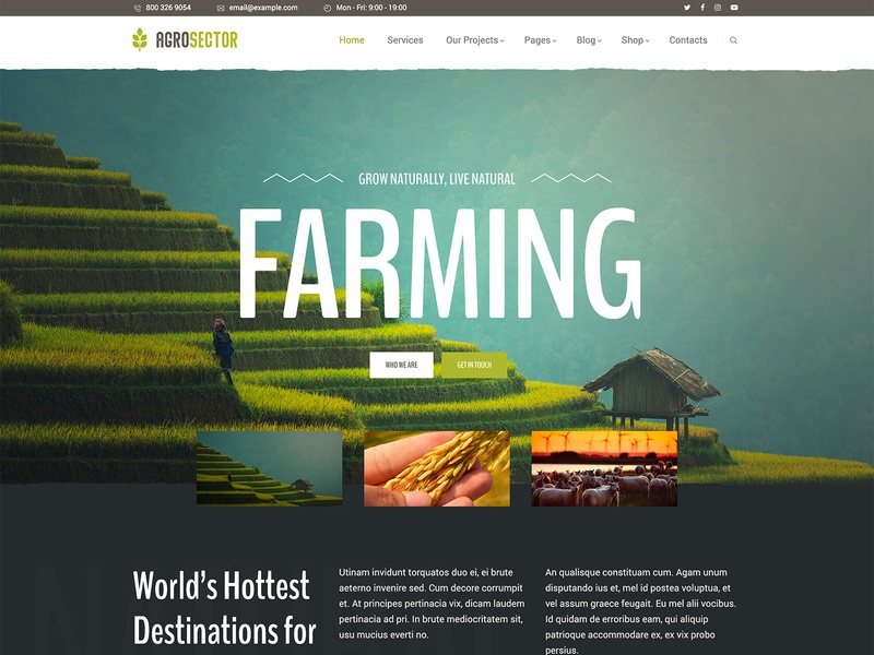 Agrosector - Agriculture Elementor Builder WordPress Theme woocommerce store shop retail organic food organic farm organic health gutenberg food producers farming eco farm agrotourism agritourism agriculture