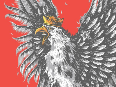 Polish Eagle coat of arms eagle polish poland dribbble design illustration