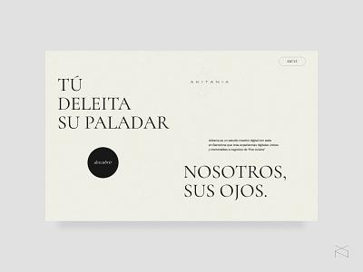 Akitania - digital creative studio minimal website agency studio web ux ui