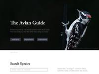 Avian Guide Mockup