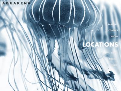 Aquarena Website ui design landing page web design web