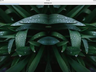 Brutalist Website Design 2 nature leaves green webdesign website concept website sketch art design