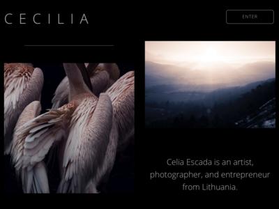 Portfolio Website Design webdesigner webdesign pink black blue website concept art ui ux sketch web website portfolio design