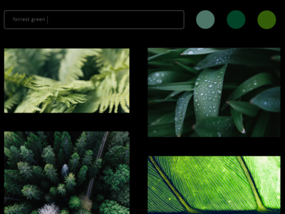 Color Picker Concept Website 3 outdoors leaves green website concept website webdesigner webdesign web ux ui sketch nature design dark mode creative color picker color black art