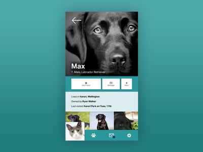 Pet Friendly Social Media Application Mockup