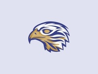 Eagle Logo Illustration