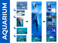 Aquarium World Web Design