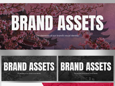 NDA project: looking for visual references graphics cover steps brand visuals branding
