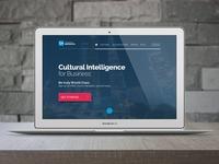 Country Navigator Website Design