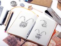 Sketch for Alpine ibex illustration