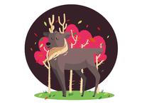 Illustration- Deer