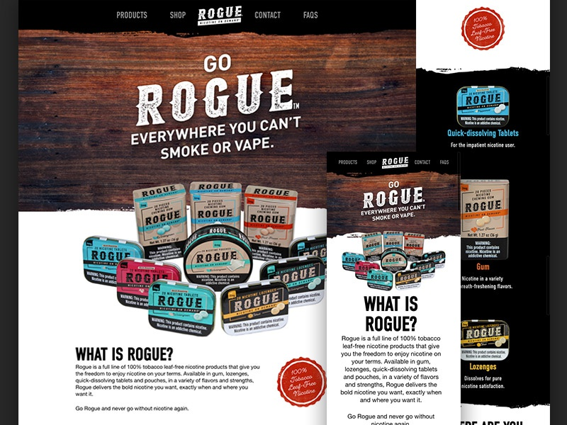 Rogue skin reskin ui user-interface website design