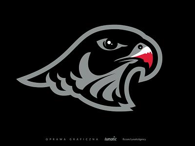 Falcon - Sports Branding eagle bird falcon sports branding sports design logo sport