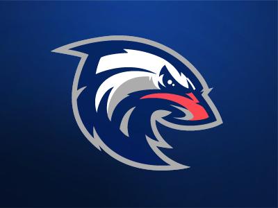 Eagle team nba sports branding bird sport basketball sport logo mascot