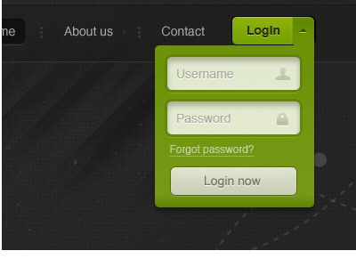 Login Area login demo button dark green