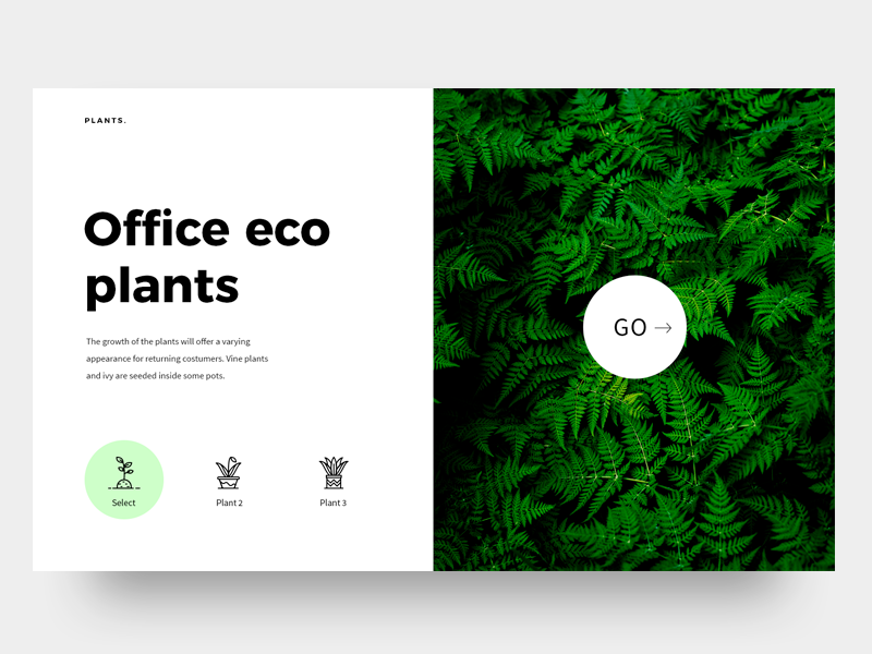 Office eco plants white web visual ux ui minimal plants header graphic office design clean