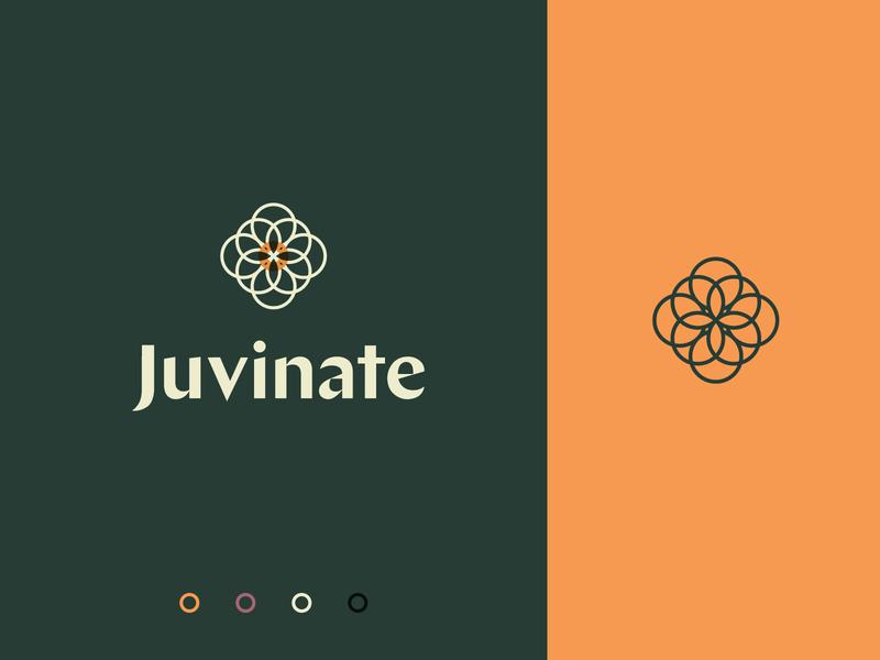 Juvinate | Branding colorful ux ui typography icon brand identity branding logo