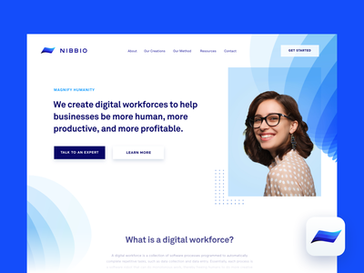 Nibbio | Hero icon brand branding typography people web ui