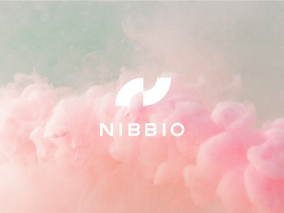 Nibbio | Brand flying artificial intelligence ai clouds colorful typography brand identity branding logo