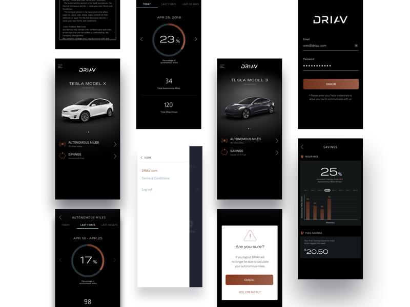 DRIAV | Product Design 2 brand identity icon brandmark logo drive autonomous automobile tesla