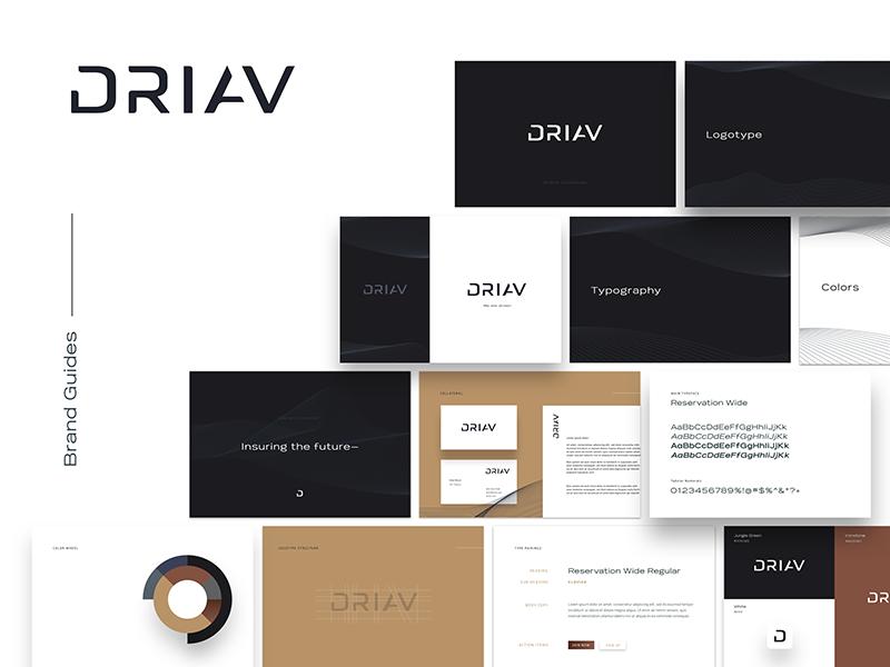 DRIAV | Brand Guides tesla automobile autonomous drive logo brandmark icon identity brand