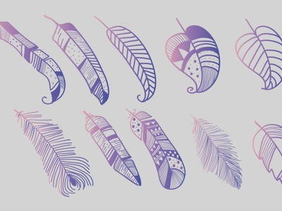 Feathers Vector flat iconography icon free vectors feather vector feathers logo illustration vector design free vector behance graphic design graphic out