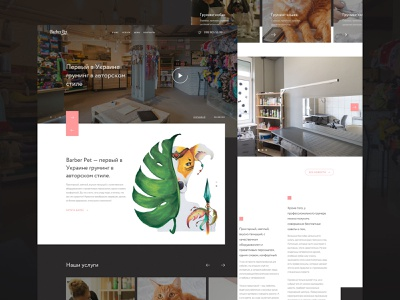 Barberpet / Corporate Website design clean business corporate layout ux ui flat webdesign web