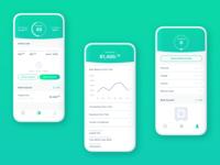 Loan application screens