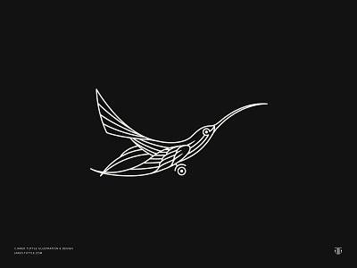 Hummingbird Logo design graphic design illustrator illustration linework monoline hummingbirds hummingbird identitydesign branding logo designer icon design icon logo design logo