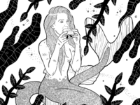 Mermay illustration